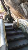 Aap bij de oude tempel op de berg Stock Foto