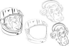 Aap die aan muziek in een fietshelm luisteren in een moderne raceautohelm Vector illustratie - Het vector royalty-vrije illustratie