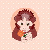 Aap die een oranje bloem houden Stock Foto
