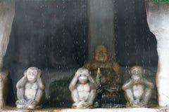 Aap drie, sluit omhoog van hand kleine standbeelden met het concept van Stock Fotografie