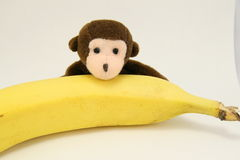 Aap en banaan Royalty-vrije Stock Foto's