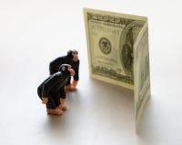 Aap en geld Stock Afbeelding