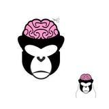 Aap met het masker van hersenencarnaval Grappig masker voor Kerstmis en n stock illustratie