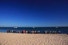 Aap Mia - Westelijk Australië Royalty-vrije Stock Afbeelding