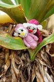 Aap, symbool, intelligent, met de hand gemaakt, gebreid stuk speelgoed Stock Foto's