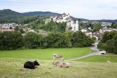 Aarburg, Suiza Fotografía de archivo