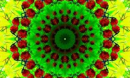 Aard als thema gehade mandala met een herhaalde rode frambozen vector illustratie