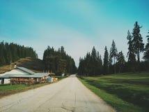 Aard in de berg van Bulgarije stock afbeelding