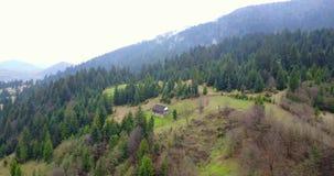 Aard in de bergen, mooi landschap, mooi berglandschap, de Karpatische Bergen, een dorp in stock videobeelden