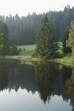 Aard, de spiegels van het bergmeer De bomen worden weerspiegeld in het water Royalty-vrije Stock Foto's