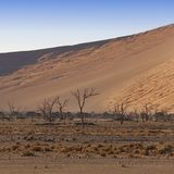 Aard en landschappen van Namibië royalty-vrije stock afbeeldingen