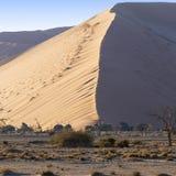 Aard en landschappen van Namibië royalty-vrije stock foto