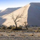 Aard en landschappen van Namibië stock foto's