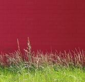 Aard en rode muur Royalty-vrije Stock Foto