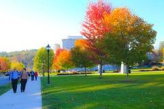Aard en stad De rode herfst Royalty-vrije Stock Afbeeldingen
