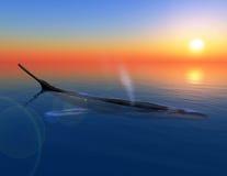 Aard en walvis vector illustratie