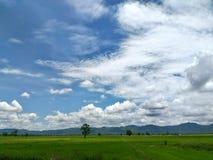 Aard en wolken Stock Foto