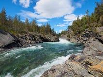 Aard, landschap van snelle bergrivier in Noorwegen Stock Afbeelding