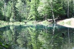 Aard in Polen, Groen Meer Royalty-vrije Stock Fotografie