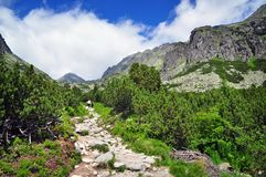 Aard Tatras Royalty-vrije Stock Afbeelding
