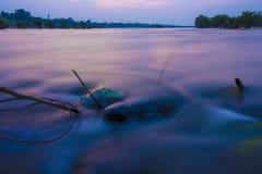 Aard in Thailand Stock Afbeeldingen