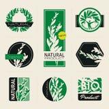 Aard-Themed etiketten en banners met bladeren Stock Fotografie