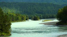 Aard van Altai, Katun-Rivier in de zomer stock video