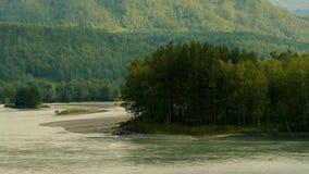 Aard van Altai, Katun-Rivier in de zomer stock footage