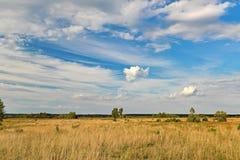 Aard van het steppegebied stock afbeeldingen