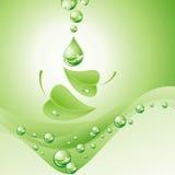 Aard. (vectorillustratie) Royalty-vrije Stock Fotografie