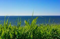 Aardachtergrond, gras, overzees en hemel Royalty-vrije Stock Afbeeldingen