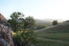 Aardachtergrond met Rolling Groene Heuvels hoog - kwaliteit Royalty-vrije Stock Fotografie