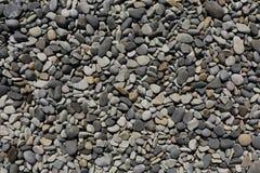 Aardachtergrond van grijze overzeese kiezelstenen, kiezelsteen voor tuindecor Stock Afbeeldingen