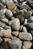 Aardachtergrond van grijze overzeese kiezelstenen, kiezelsteen voor tuindecor Royalty-vrije Stock Afbeelding