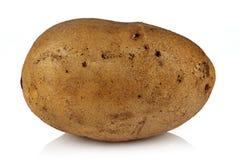 Aardappel. royalty-vrije stock afbeelding