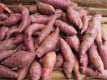 Aardappel Stock Foto