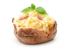 Aardappel in de schil Royalty-vrije Stock Foto's