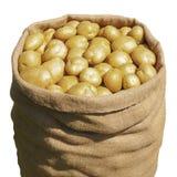 Aardappel in een zak Stock Foto