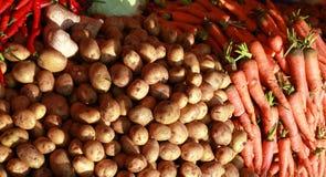Aardappel en wortel Royalty-vrije Stock Foto's