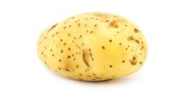 Aardappel op wit Royalty-vrije Illustratie