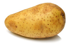 Aardappel op witte achtergrond Royalty-vrije Stock Foto's
