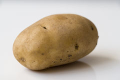Aardappel op witte dichte omhooggaand als achtergrond Stock Foto