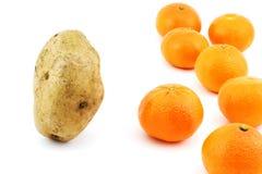 Aardappel versus mandarins Royalty-vrije Stock Foto