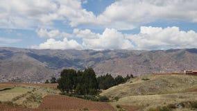 Aardappelaanplanting bij Heilige Vallei in Cusco, Peru stock footage