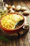 Aardappelbraadpan met vlees en netel Stock Foto's