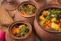 Aardappelen in de schil met paddestoelen in pot Stock Fotografie