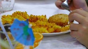 Aardappelfrieten en lapje vlees op een plaat met a stock video