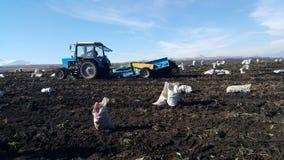 Aardappelmaaimachine en tractor stock afbeelding