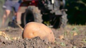 Aardappeloogst met tractor op achtergrond stock footage