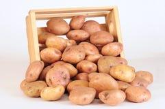 Aardappels. Stock Fotografie